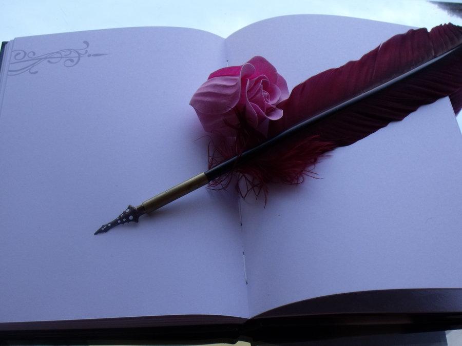 blog novel indice puntate