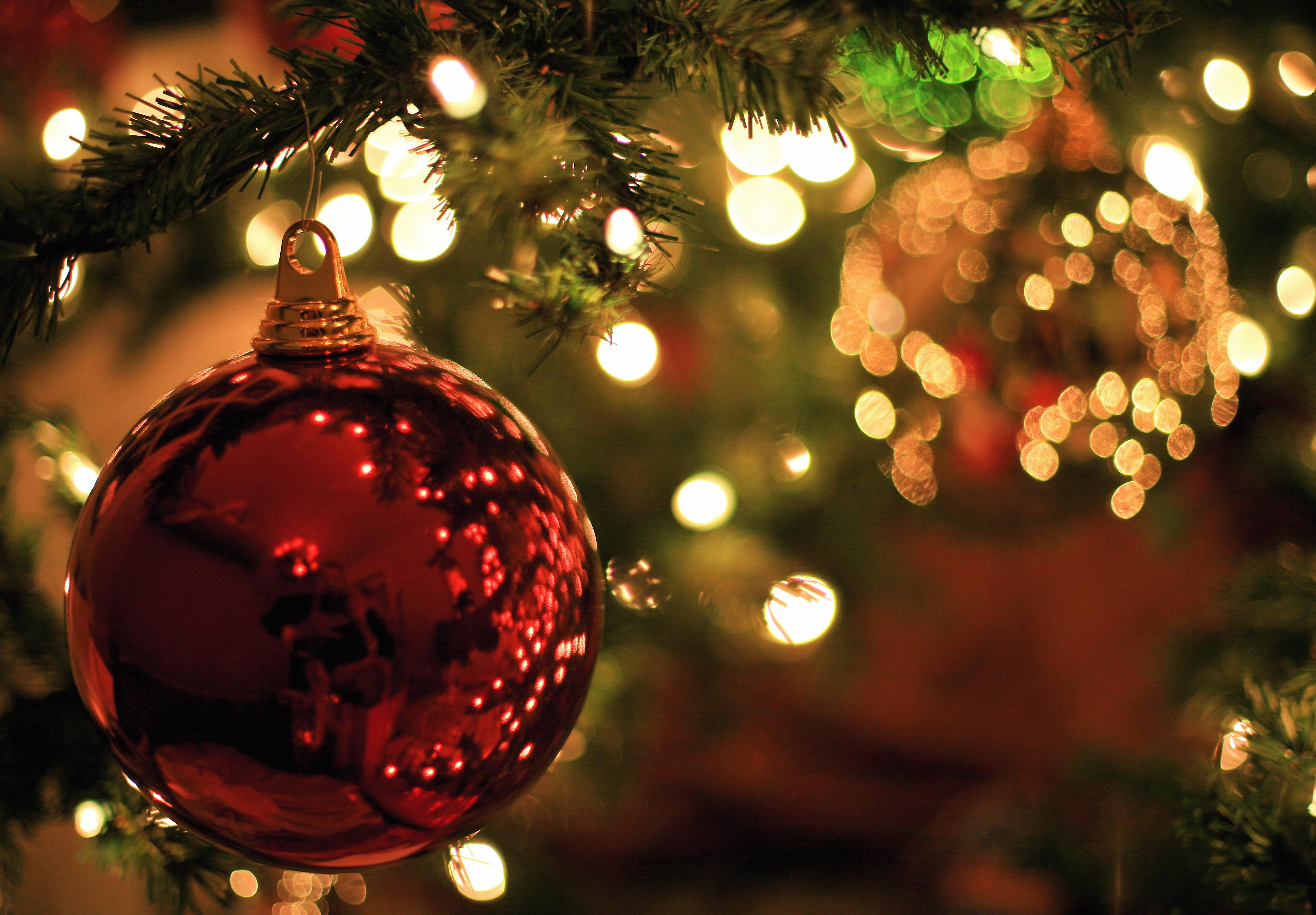Lucine, albero di Natale e... esercita la magia che è in te