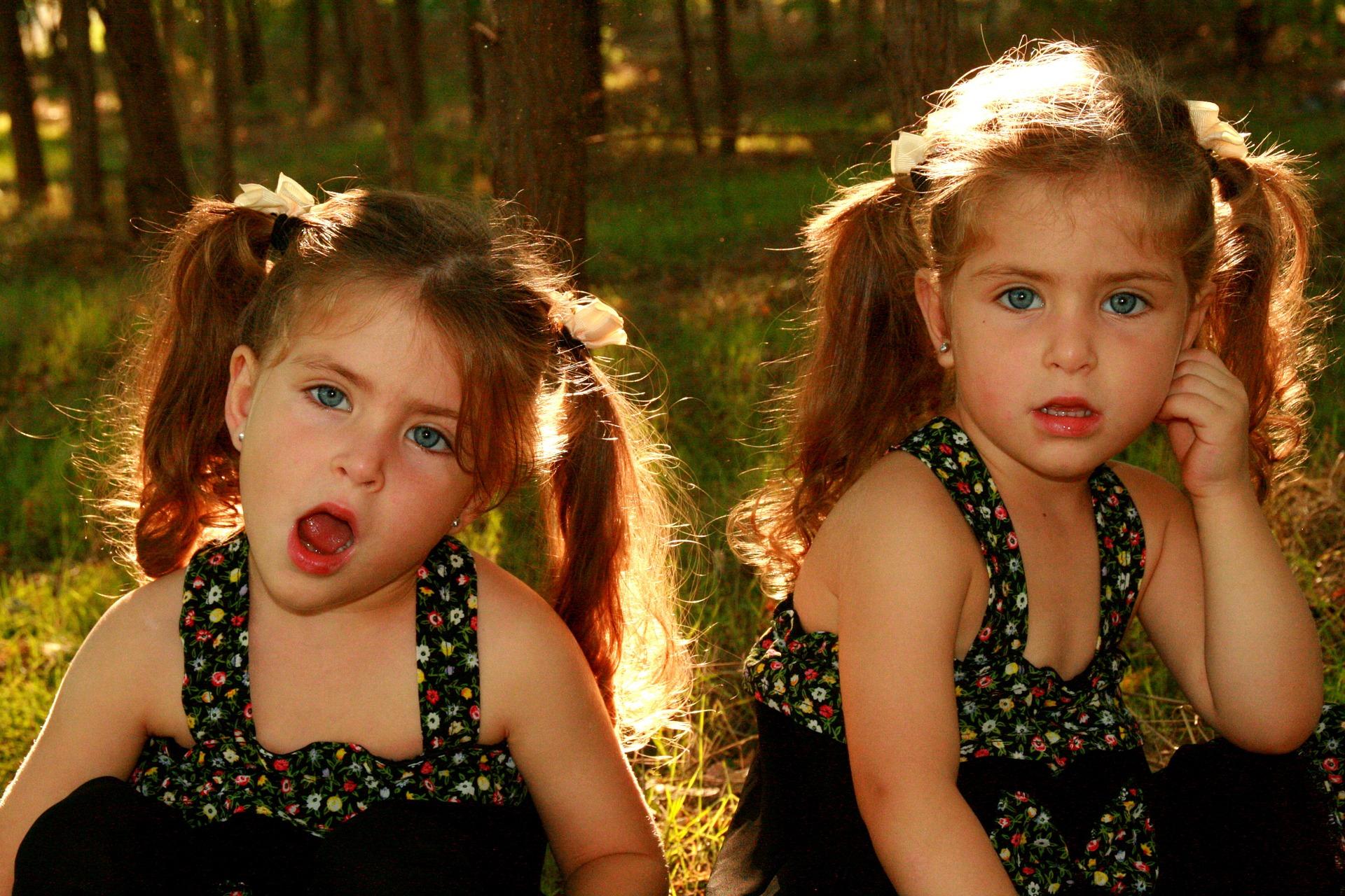 ricapitolazione-gemelli