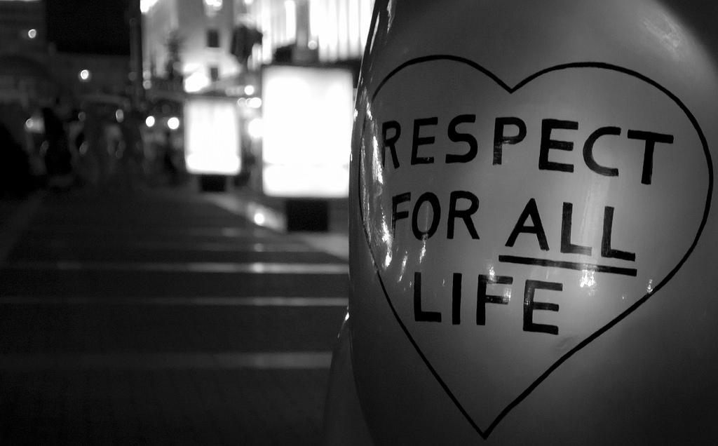 frasi e aforismi sul rispetto