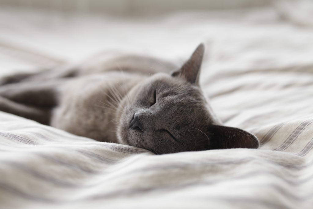 dormire bene in 9 passaggi