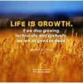 come lavorare come life coach spirituale