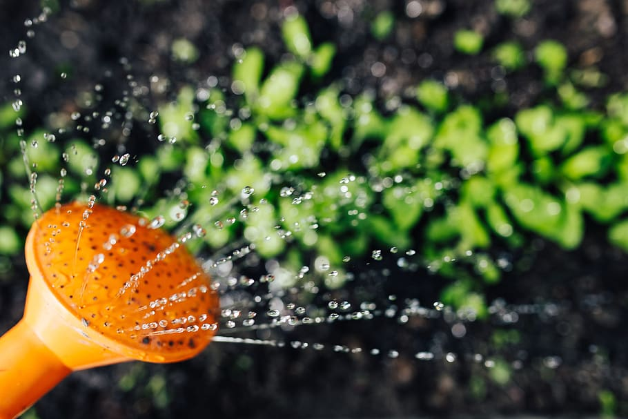 Investire piccoli capitali, 7 idee rivoluzionarie